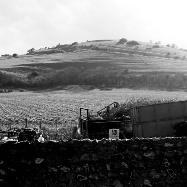 In the heart of the South Downs